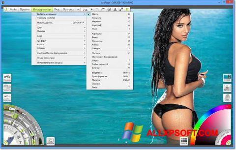 Screenshot ArtRage für Windows XP