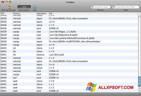 Screenshot FileMon für Windows XP