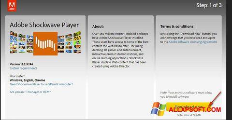 Screenshot Adobe Shockwave Player für Windows XP