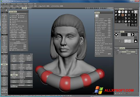 Screenshot 3D-Coat für Windows XP
