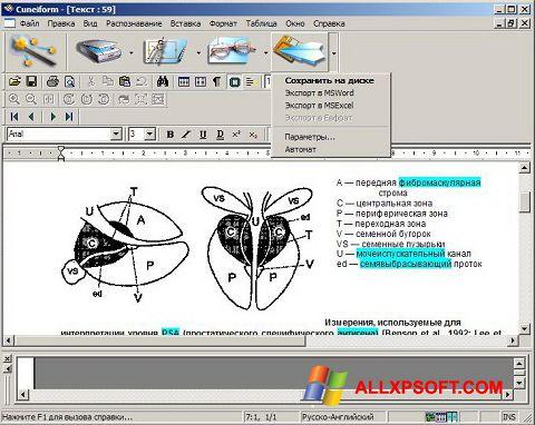 Screenshot CuneiForm für Windows XP
