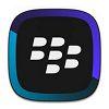 BlackBerry Link für Windows XP