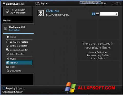 Screenshot BlackBerry Link für Windows XP