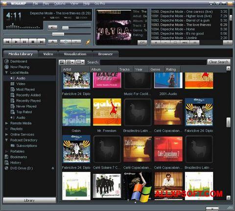 Screenshot Winamp für Windows XP