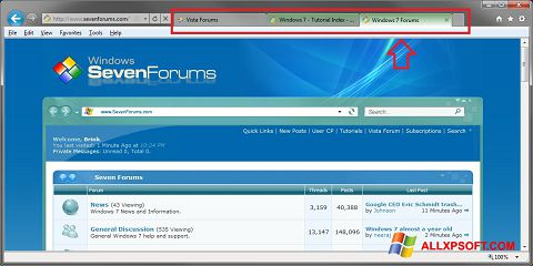 Screenshot Internet Explorer für Windows XP