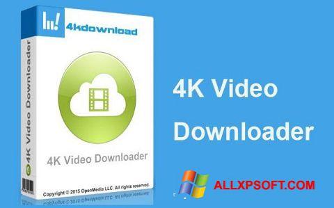 Screenshot 4K Video Downloader für Windows XP