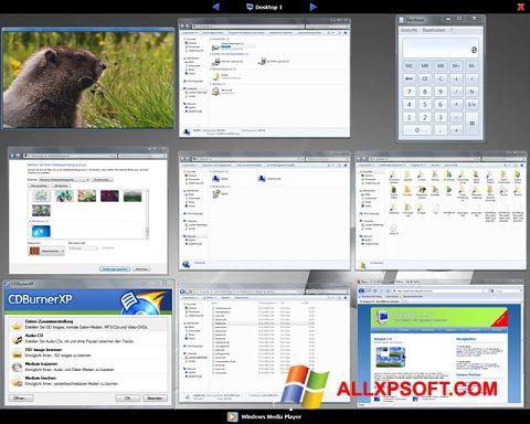 Screenshot Dexpot für Windows XP