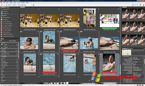 Screenshot Adobe Bridge für Windows XP
