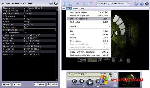 Screenshot FLV Player für Windows XP