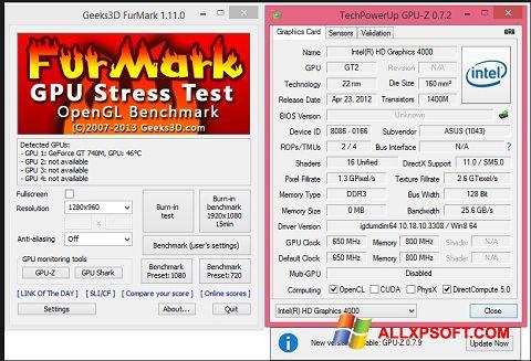 Screenshot FurMark für Windows XP