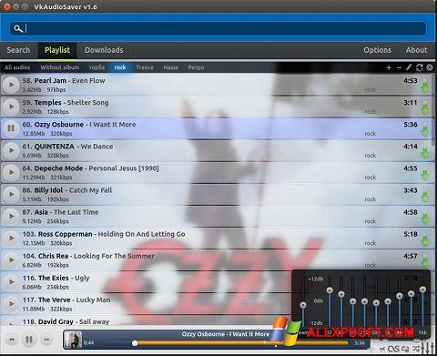 Screenshot VkAudioSaver für Windows XP