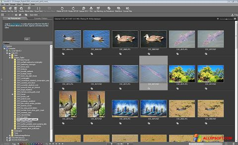 Screenshot ViewNX für Windows XP