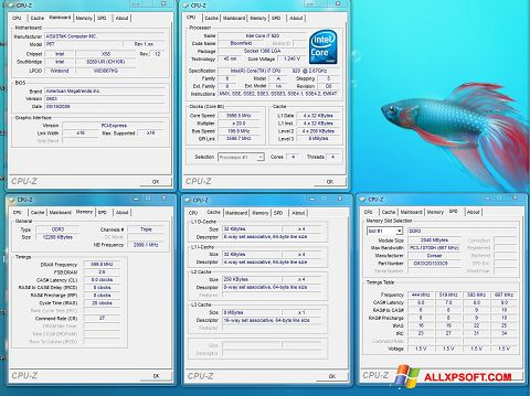 Screenshot CPU-Z für Windows XP