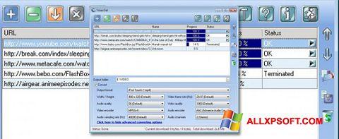Screenshot VideoGet für Windows XP