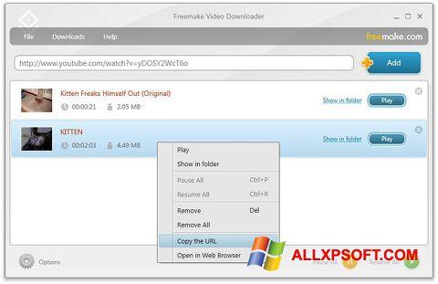 Screenshot Freemake Video Downloader für Windows XP