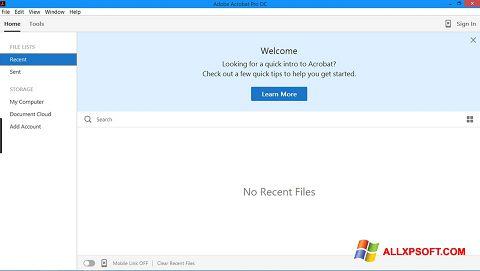 Screenshot Adobe Acrobat Pro für Windows XP