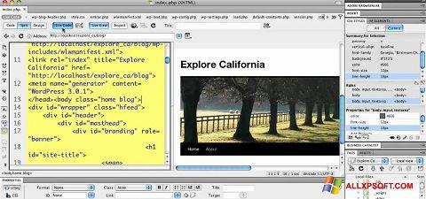 Screenshot Adobe Dreamweaver für Windows XP