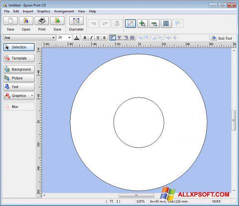 Screenshot EPSON Print CD für Windows XP