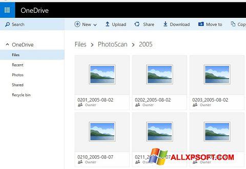 Screenshot OneDrive für Windows XP